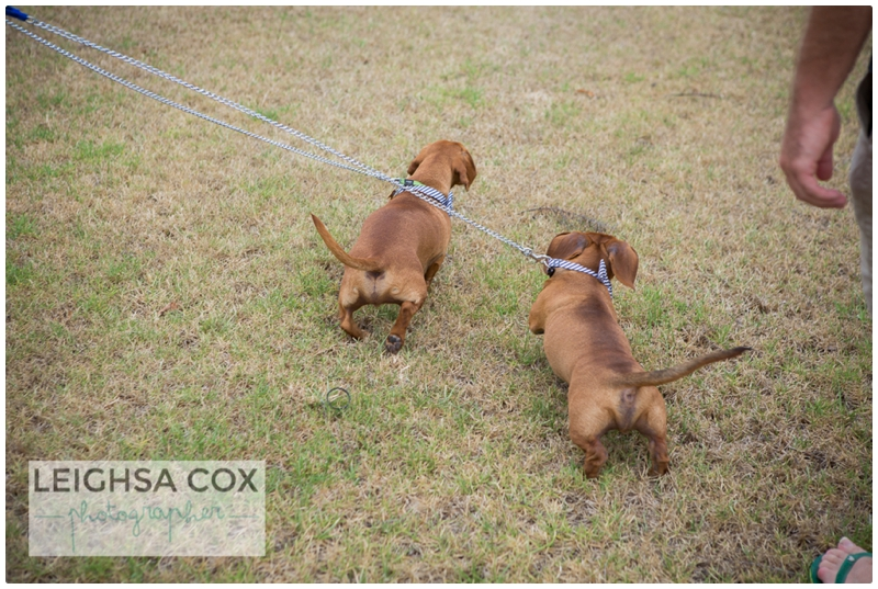 Hunter valley couple_0358