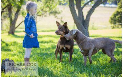 Family Farm Portraits Hunter Valley