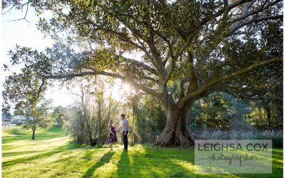 Maternity Portraits Hunter Valley