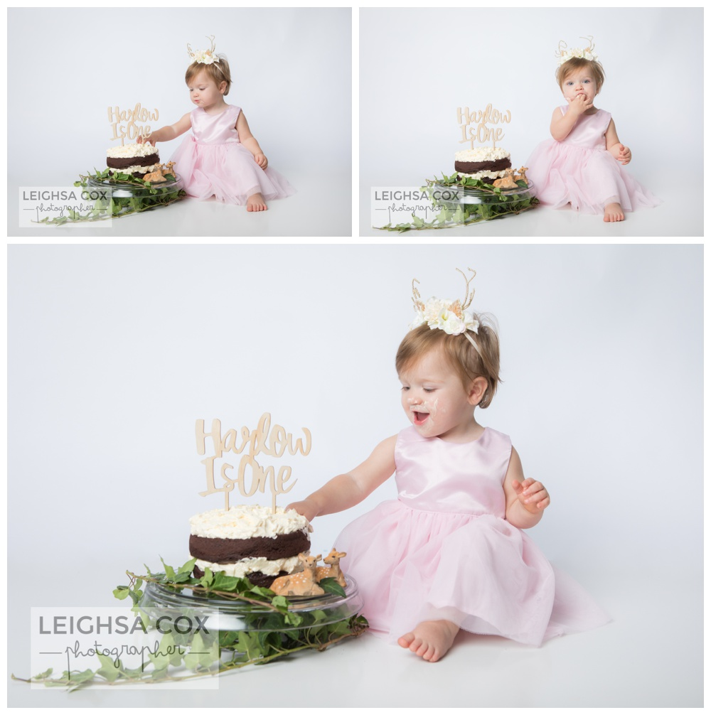 Cake Smash photos maitland