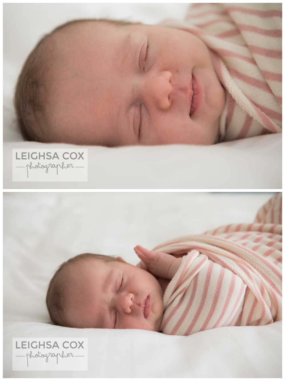 Newborn Photography Maitland