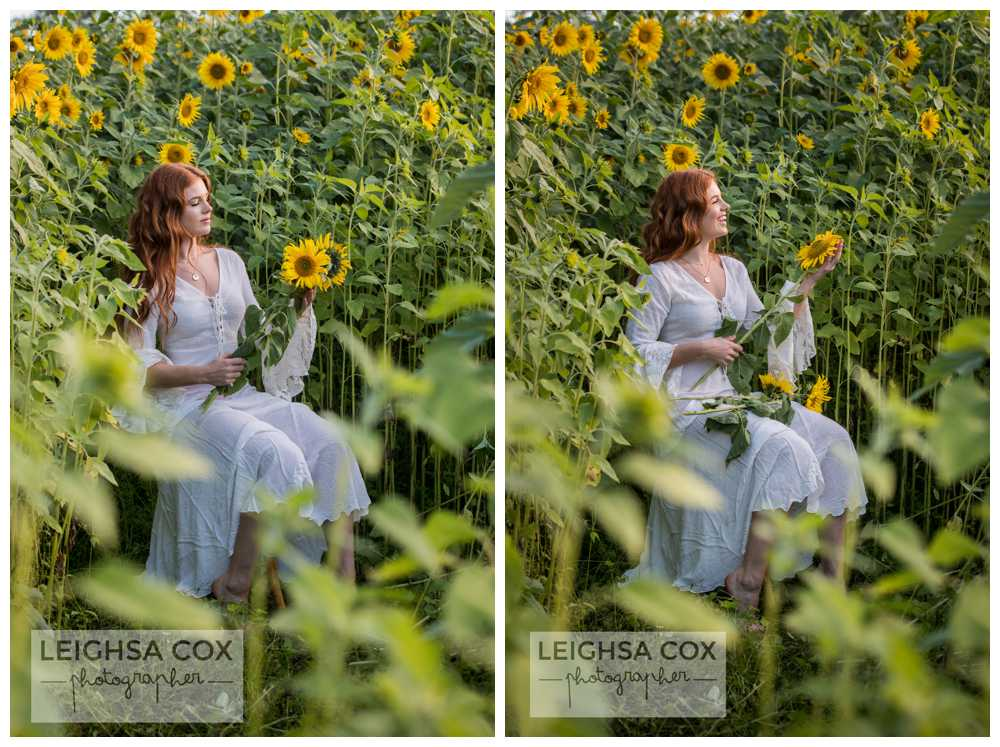 boho sunflower shoot