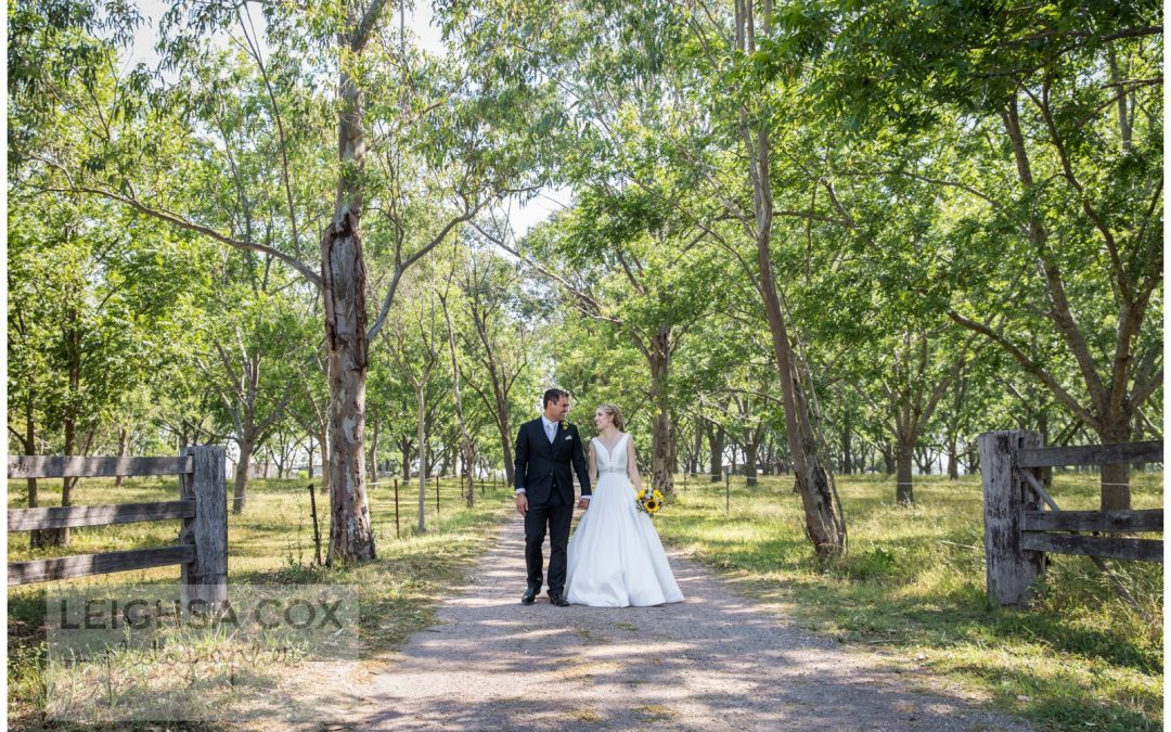 Intimate Woodville Wedding