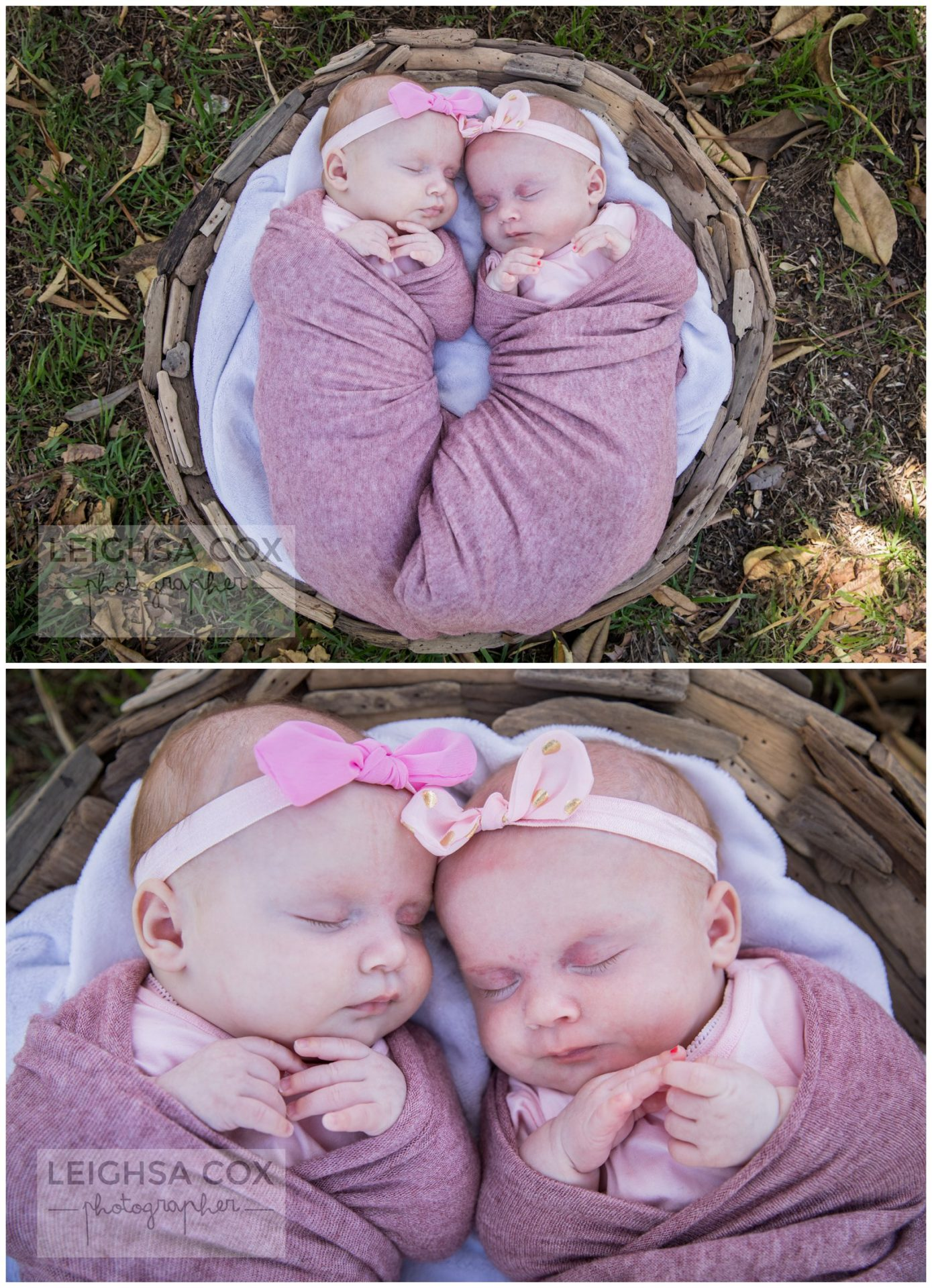Maitland newborn photographer