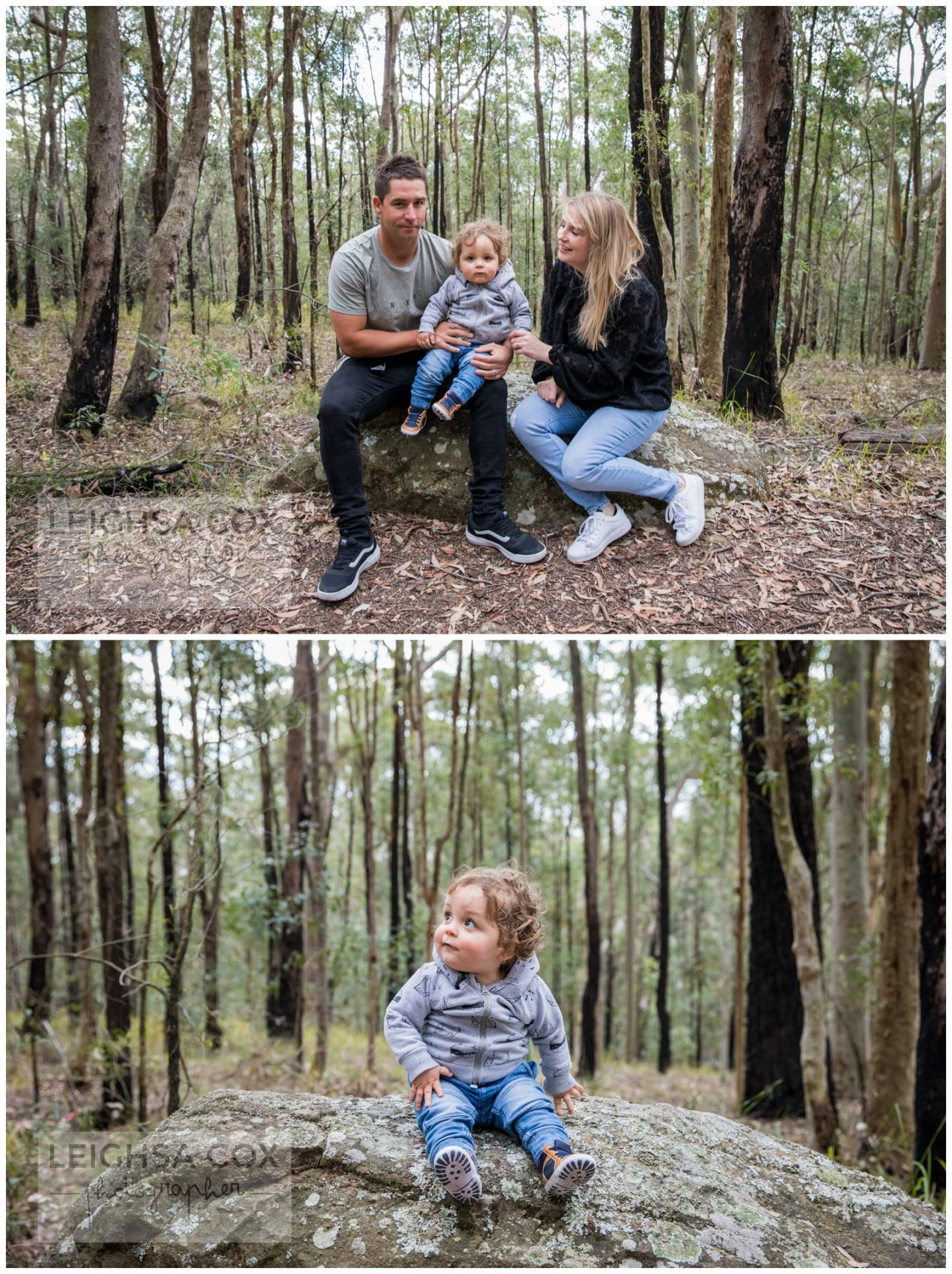 Mt sugarloaf portraits