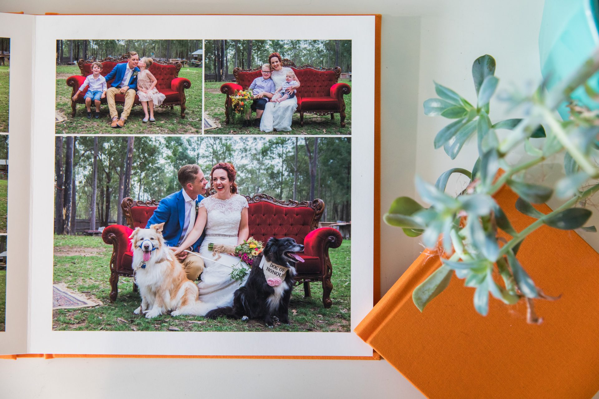beautiful orange wedding album