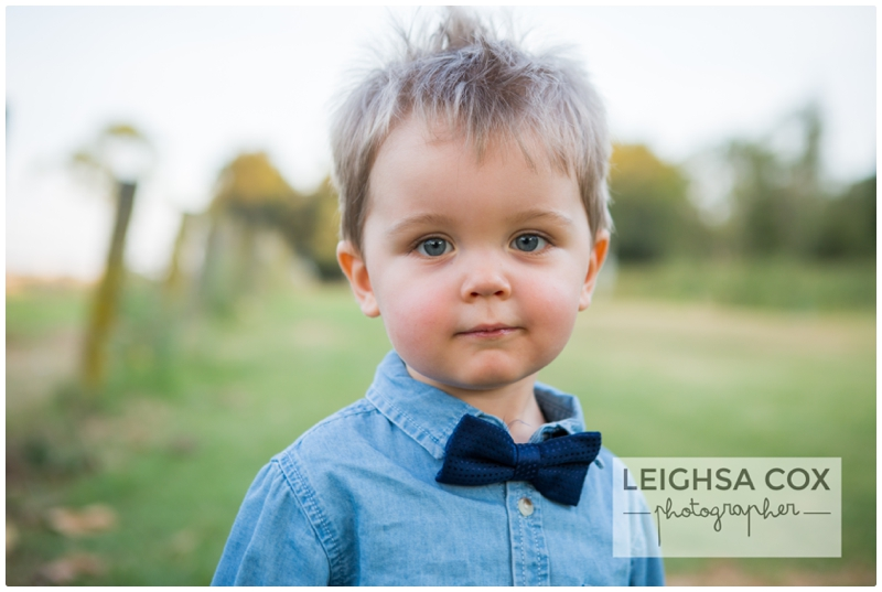 little boy and bow tie