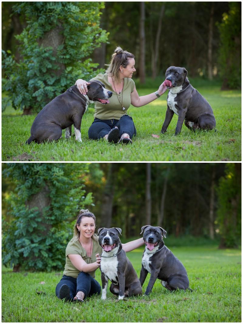doggo portraits maitland