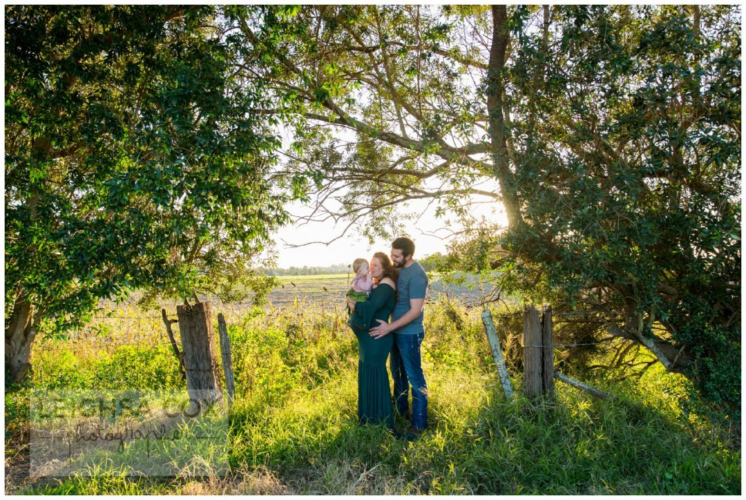 family maternity portraits in a field