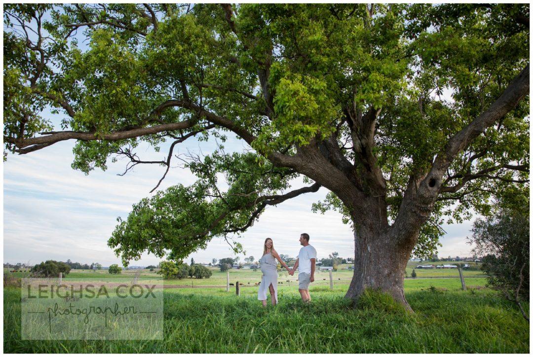 couple under big beautiful tree