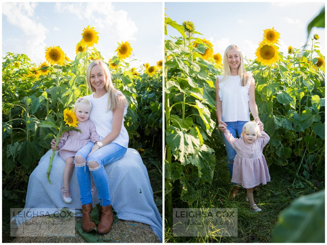 mother daughter sunflowers